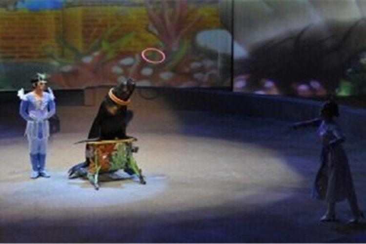 Shanghai Circus World3