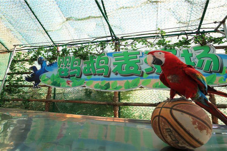 龍沙動植物園2