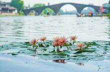 杭州边藏了一个免费古镇,比乌镇西塘小众人少,周末去正好!