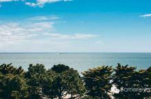 这个夏天,我只愿面朝大海
