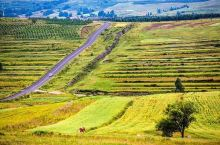 美丽的草原天路