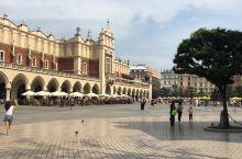 克拉科夫是波兰南部一座秀外慧中令人难以忘怀的文化城市。