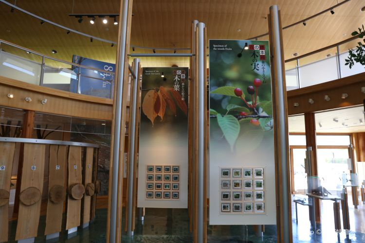 Toyako Volcano Science Museum2