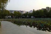 烟台大学三元湖