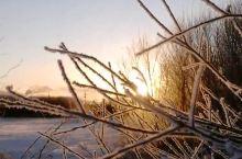 美丽的冬季日出