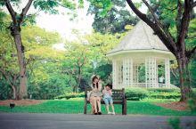 新加坡超美免费植物园,国内很多人都不知道
