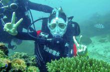 人生要体验一次潜水💕纪念我的第一次深潜!