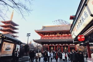Tokyo,Recommendations