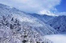 南方雪景在抖音爆红,你竟然还不知道?