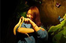 城市中心的奇幻动物园,看美女与蛇共舞