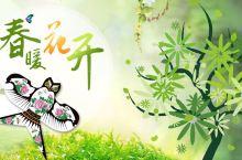 广州五个踏青的好去处,你被哪个圈粉了?