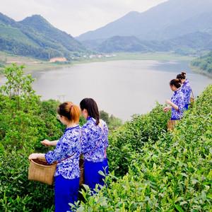宜黄游记图文-抚州|蜜桔花香飘傩舞之乡,农禅小镇宜黄戏传承