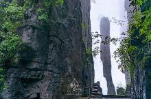 恩施大峡谷的标志,下窄上宽的一炷香,连牛顿都无法解释