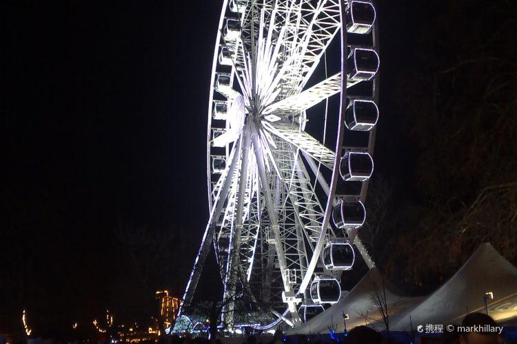 Wonderland Park2