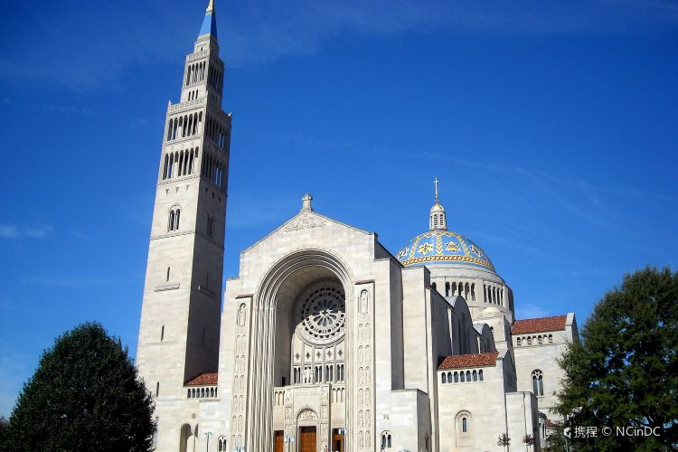 Basilica of the National Shrine of the Immaculate Conception4