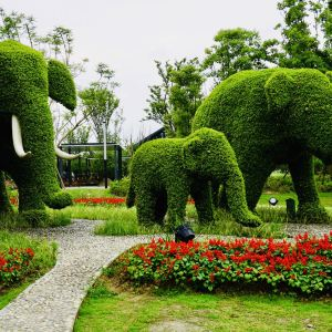 锦绣安仁花卉公园旅游景点攻略图