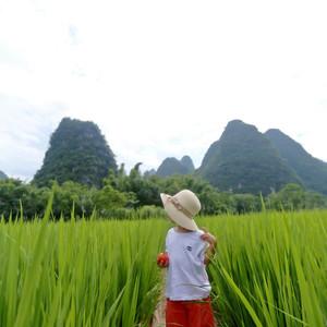 阳朔游记图文-暑假亲子游,带着孩子体验桂林阳朔阅山阅水阅生活的慢旅行