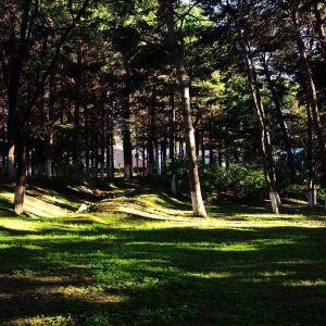 长春动植物公园旅游景点攻略图