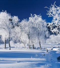 [新疆游记图片] 冬季游新疆,我建议你这样玩,够嗨够有趣|干货攻略集