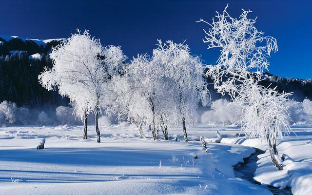 冬季游新疆,我建议你这样玩,够嗨够有趣 干货攻略集