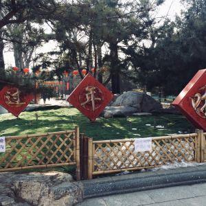 宣武艺园旅游景点攻略图