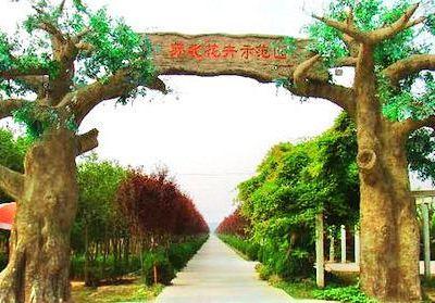 Subei Flower Demonstration Park