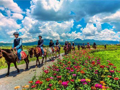 Lashihai Ancient Tea-Horse Route