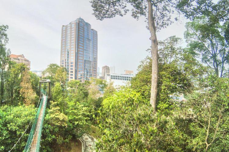 KL Forest Eco Park