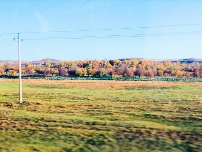 呼伦贝尔大草原 一万个人眼中有一万种呼伦贝尔大草原的秋 – 呼伦贝尔游记攻略插图19