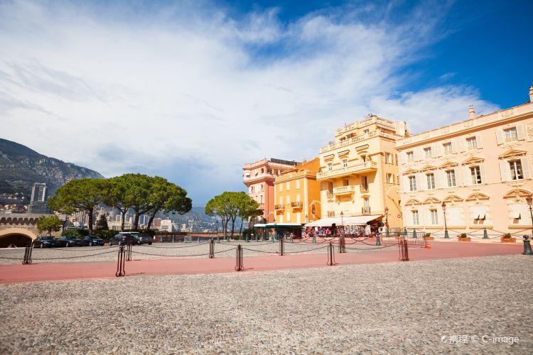 Prince's Palace of Monaco1