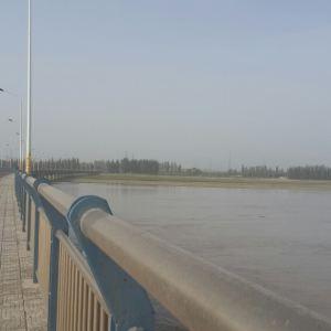阿拉尔塔里木河大桥旅游景点攻略图