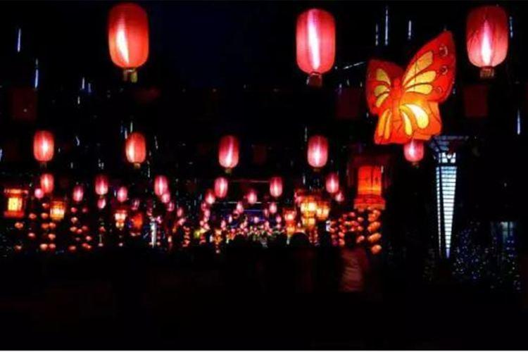 Xiamen Horticultural Expo Garden2