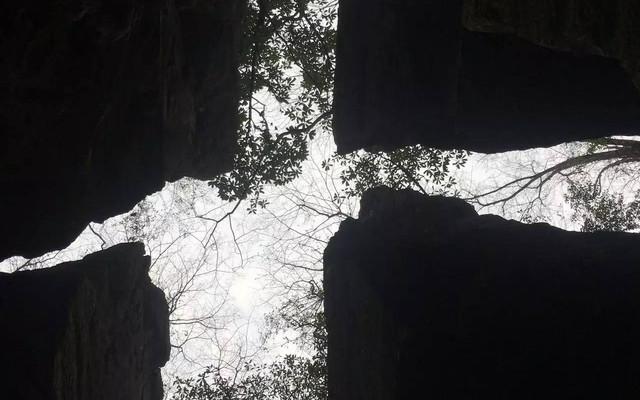 """洞天湾-""""燕崖""""之得名,不是因为崖形似燕子,也不是常见小燕子所筑的巢,而是蝙蝠——当地人称为燕蝠"""