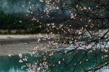 雨中写生白洋淀欢墅