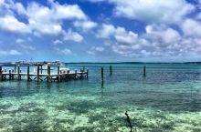 巴哈马是加勒比海上的岛国,多珊瑚礁和浅滩,海水清澈