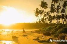 斯里兰卡|印度洋上的一颗掌上明珠
