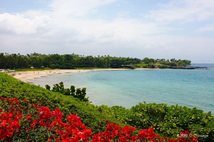 Hapuna Beach State Park1