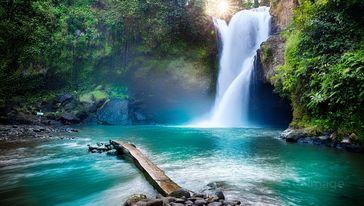 森林瀑布观景
