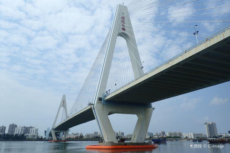 海口世紀大橋1