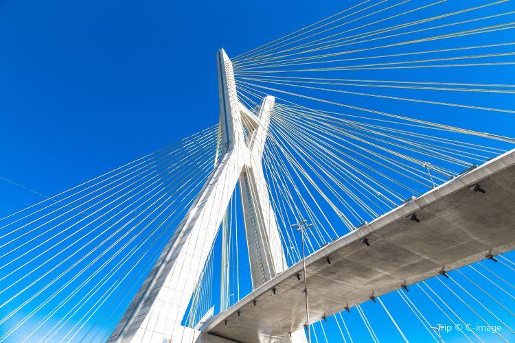 Octavio Frias de Oliveira Bridge2