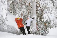 芬兰冬季安全出行宝典