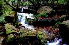 虞山国家森林公园