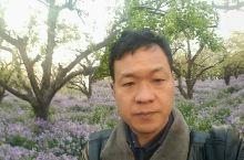 宿迁三台山国家森林公园