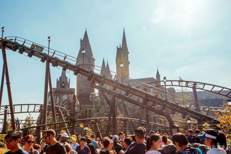 The Wizarding World of Harry Potter3