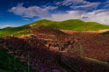 小木屋、大乾坤--嫣红的佛国世界(色达、亚青寺之旅)