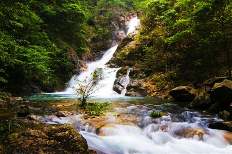 Mount Jiulong (Nine Dragons Mountain) National Forest Park1