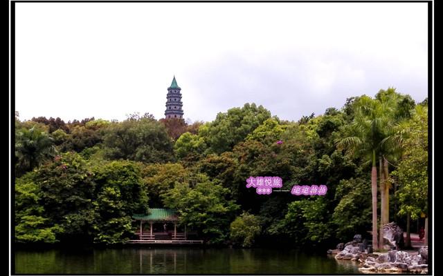 羊城行游喝早茶,意犹未尽上青秀(广州、南宁专线)