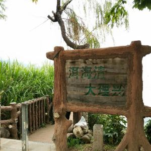 洱海公园旅游景点攻略图