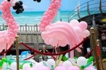 超级粉嫩,巨型火烈鸟空降合肥万达水乐园,陪你一起肆意狂欢!