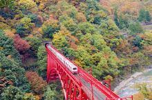 日本赏枫备忘录   黑部峡谷小火车